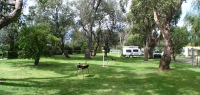 camping-ground0006