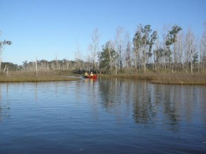 Canoeing Durras Lake