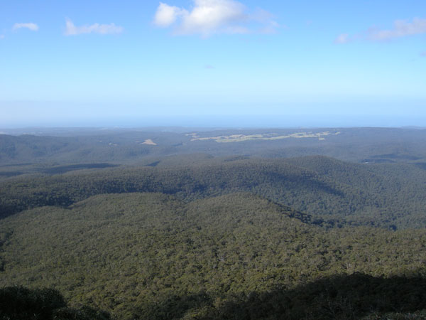 View from Pigeon House Mountain looking East