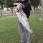 Jeffs Mulloway 9th Jun 18