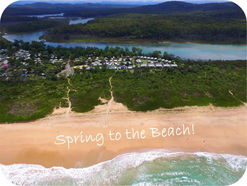 Spring to the Beach 19